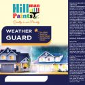 All Weather Guard Exterior Finish 4 Litres